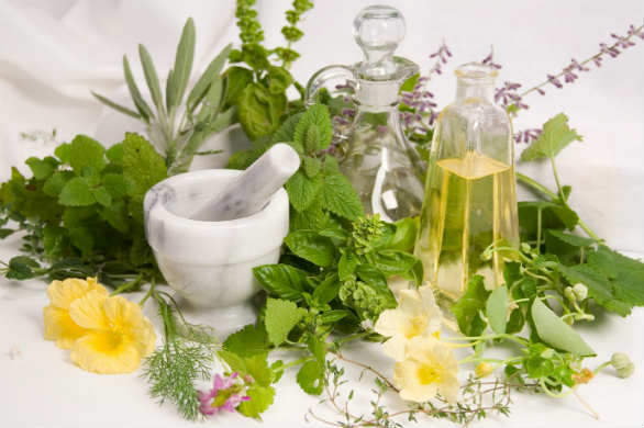 hierbas para la artritis