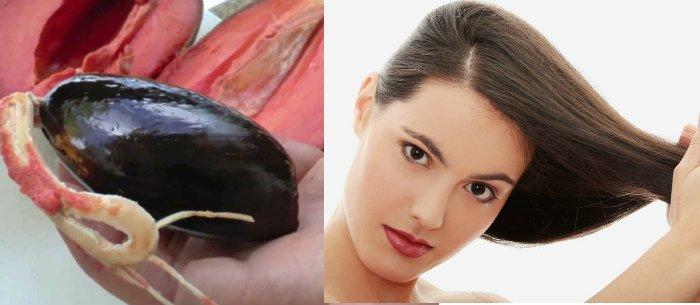 beneficios del aceite de hueso de mamey