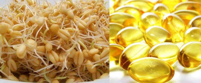 para que sirve el aceite de germen de trigo