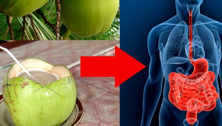 Dieta para bajar de peso en 1 semana 5 kilos una