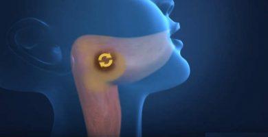como desinflamar la garganta