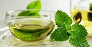 para que sirve el boldo como planta medicinal