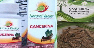 para que sirve la cancerina como planta medicinal