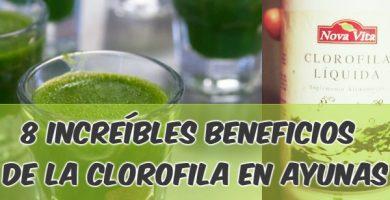 beneficios de la clorofila en ayunas