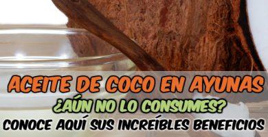 beneficios de tomar una cucharada de aceite de coco en ayunas