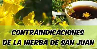 efectos secundarios de la yerbuca de san juan