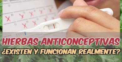 hierbas medicinales para no quedar embarazada